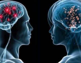 Documental sobre el cerebro humano y sus asombrosas funciones